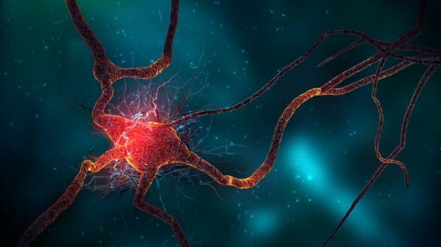 neuron_cell-1920x1080